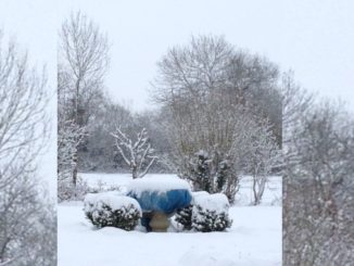 Neige à Faverolles février 2018
