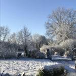 Avril 2021 sous la neige